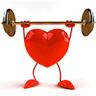 vfs | fitness